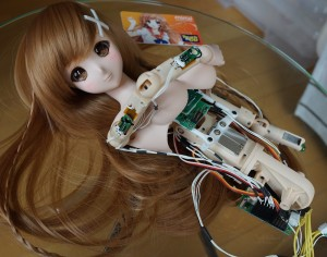 3dp_smartdoll_insides_edit